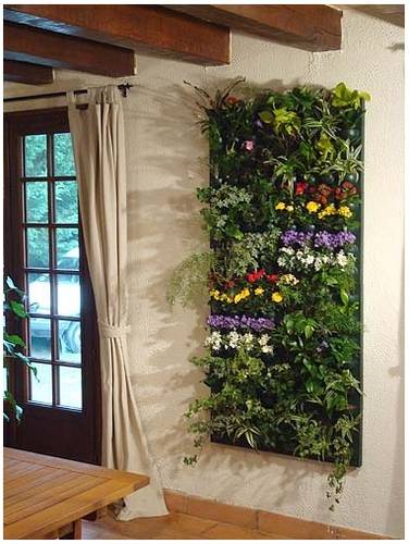 Foto de wallnatura jardin vertical interior fotos en - Jardin vertical interior ...